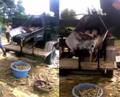 閲覧注意|トウモロコシを収穫中の死亡事故原因が機械に吸い込まれ・・・