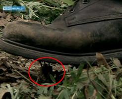 戦場映像|地雷を踏んだ仲間を救出したら負傷者が2名増えました・・・