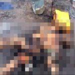 グロ動画|焼畑農業で火の手が早く逃げ遅れた人が・・・