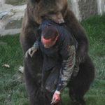 グロ動画|熊に遭遇して不運にも逃げられなかったら…