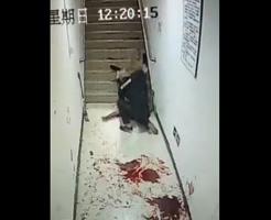 TVじゃ絶対流せない!監視カメラが捕らえたガチの殺人事件が怖すぎる…