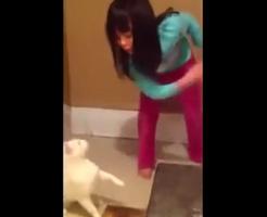 幼女とネコの組み合わせがほっこりする展開ばかりと思ったら大間違いだぜwww