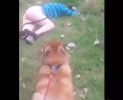 リアルレイプ動画|愛犬が泥酔した美女を発見!わんこ「ご主人様、アナル掘れワンワンwwwww」