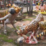 閲覧注意|中国の動物園にて、トラの群れにリンチされた男性が死亡