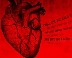 閲覧注意|こいつさっきまで生きてたんだぜ。殺した人間の腹裂いて、心臓取り出して、引き裂いてるのが例によってブラジル刑務所