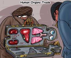 閲覧注意|臓器売買される直前子供、生きたまま連れて行かれ…