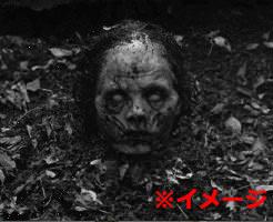 グロ画像|森の中に女性の遺体を放置すると…体半分が骨になるまで動物に食い漁られてしまった