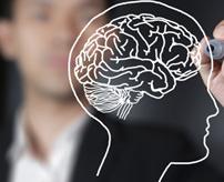 閲覧注意|うす~くスライスして抽出!医学的に脳のサンプル取り出す方法はこんな感じ