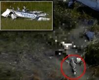 【衝撃】飛行機が沼地に墜落、機体から振り落とされたパイロット、ワニのエサになる=アメリカ