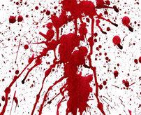 【衝撃】一瞬の出来事!横付けしてきた車から銃撃されフロントガラスに血しぶきが...=ロシア
