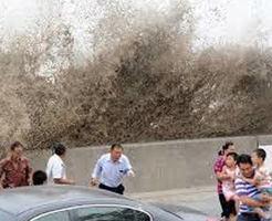 「ちょっと様子見てくる」荒れ狂う海の様子を見に行った老夫婦、波にさらわれる