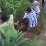 レイプ犯の証言で発見された犯されて埋められた女の子の発掘映像