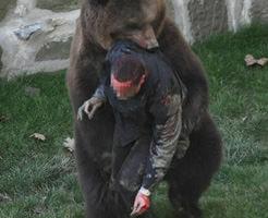 熊に遭遇して不運にも逃げられなかったら…