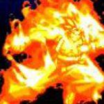 ※閲覧注意!体に火をつけて体当たりするカミカゼアタック!何もこんな死に方しなくても…