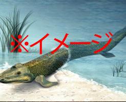 【衝撃映像】魚が陸に上がる瞬間…生物の進化の原因は食欲だった!