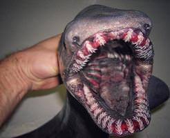【画像】怖すぎぃ!!こんなん遭遇したら絶望しかないw深海魚ギャラリー