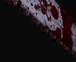 【閲覧注意】ナイフorチェーンソー?どっちも嫌すぎる麻薬カルテルの残酷極まりない処刑映像がこれ