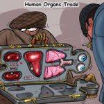 【閲覧注意】臓器売買される直前子供、生きたまま連れて行かれ…