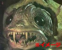 亀さんツンツン男「ツンツンツンツーンww」噛まれると指が飛ぶぐらい破壊力のあるカミツキガメの大反撃はこの後すぐ