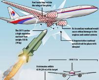 【グロ画像】ミサイルで撃墜されたマレーシア航空17便、298人が死亡した事故現場=ウクライナ