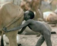 黄金水?牛の糞尿で建築、洗顔をする民族に密着!=アフリカ
