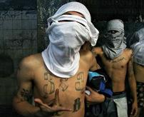 【衝撃】世界でも恐れられている凶悪犯罪組織が女をボッコボコにする鬼畜映像=ブラジル