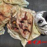 【カニバリズム】拾われたスマホの写真フォルダに女の頭の皮剥いだ画像が…殺人と人肉食で夫婦が逮捕