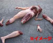 【グロ】トラックに轢かれ身体がバラバラになった少女の死体
