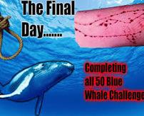 【青い鯨】「Blue Whale」による自殺者が続出!15階ビルから飛び降り車のボンネット直撃の瞬間映像