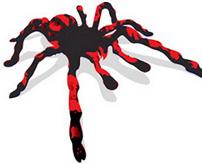 【グロ】毒クモに噛まれたらこうなる...目を逸らせたくなる傷跡からガーゼを取り出す様子
