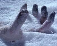 【凍死】マイナス40度を記録したロシア、女性がカチカチに凍る