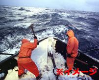 月収3000万円で3ヶ月勤務!命がけのベーリング海漁業の様子がこれ