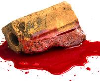 20歳の女の子、一晩中レイプされた挙句レンガで頭割られて殺害される