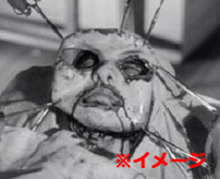 斬首、顔の皮剥ぐ、ちんこ切断、口に咥えさせる ← 麻薬カルテルの残酷処刑がこれ