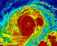 台風22号が上陸 屋根が歩行者に直撃、倒木に潰されて死者が発生する一部始終=中国