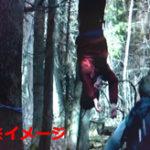 銃声が轟く森の中…カルテルが男たちを逆さ吊りにしてライフルの的に