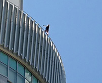JR大阪駅、大丸梅田店で女子高生が飛び降り自殺