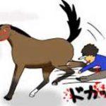 不用意に馬の後ろに近づいてしまった青年、顔面に強烈な蹴りがクリーンヒットして一撃ノックアウト!