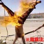 拷問され斬首され死体を燃やされる…イスラム国メンバーに対するロシア兵の仕打ちが鬼畜すぎる件