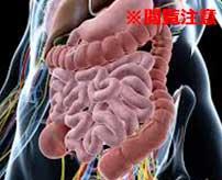 【閲覧注意】女性のお腹から飛び出している大量の内臓…息をすると内臓が盛り上がって大量の血が溢れ出す…