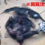 衆人環視の中拷問リンチされた男の衝撃的な画像集…