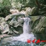 【ダーウィン賞】危険な滝壺で自撮りしようとしたDQN、滝に飲み込まれてそのまま溺死…