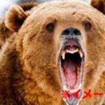 野生のクマに喰われてしまった男性の顔面がホラーすぎる…