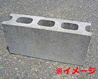コンクリートブロックで頭を粉砕された売春婦がコチラ…